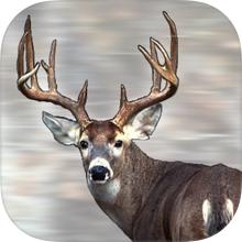 RSO-App-Icon